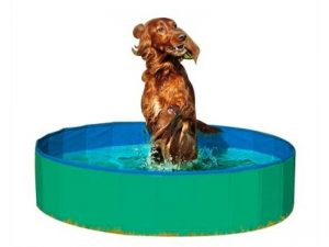 karlie-karlie-doggy-bad-groen-blauw-diameter